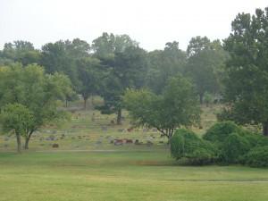 Mount Hope Graves